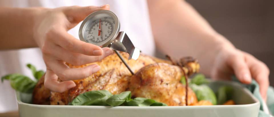 termometar za meso