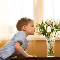 Dijete, cvijece