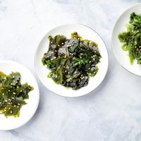 alge, Shutterstock 1516521998