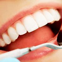 Zubi vuckovic za zaglavlje