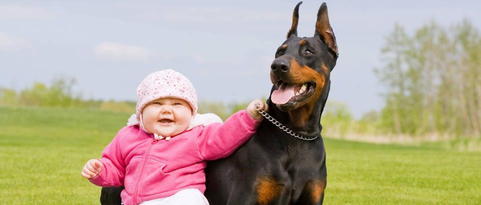 bebe i psi