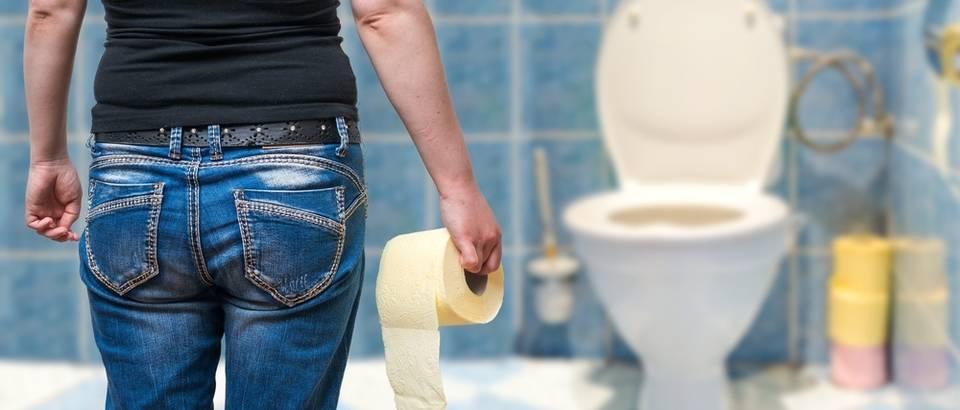 toalet, Shutterstock 427560760