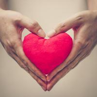 Ljubav srce ruke shutterstock 228213781