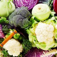 Kupusnjače brokula cvjetača kupus koraba shutterstock 245873155