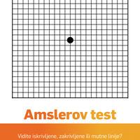 Amslerov test