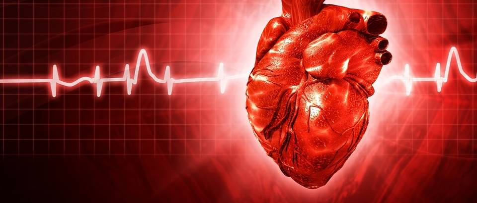 Srce puls otkucaji shutterstock 112392959