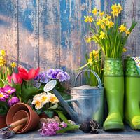 vrtlarenje, Shutterstock 384426322