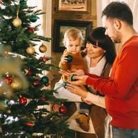 Obitelj za bozic, hutterstock 534885301