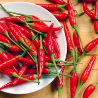 čili-paprika-začin-1
