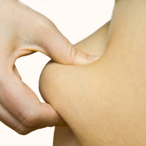 dijeta za mršavljenje za ektomorfe kako mogu pomoći svom tinejdžeru da smršavi