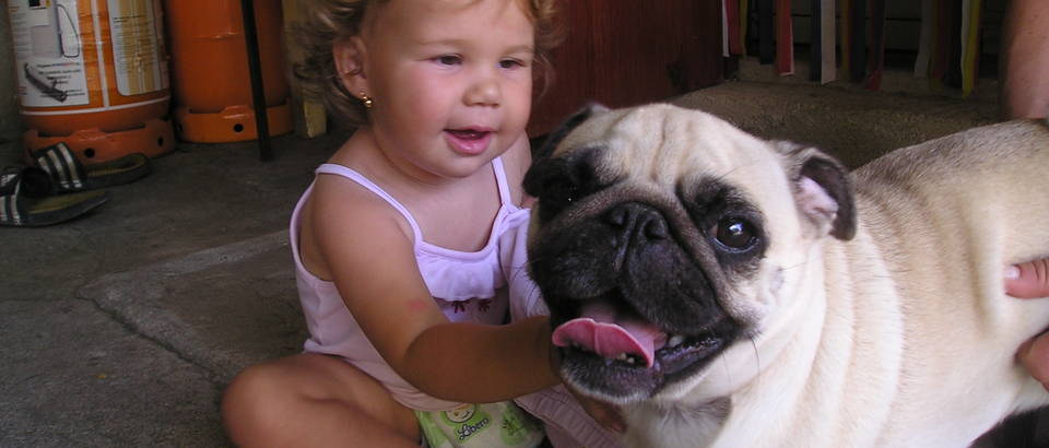 Kucni ljubimac, Dina i Rhona