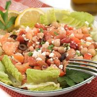 vegetarijanstvo  proteini