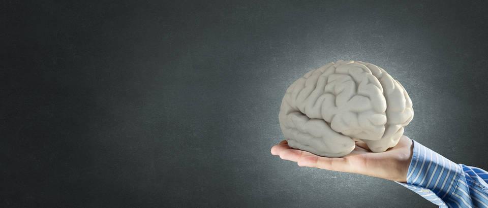 Mozak glava ozljeda shutterstock 370815926