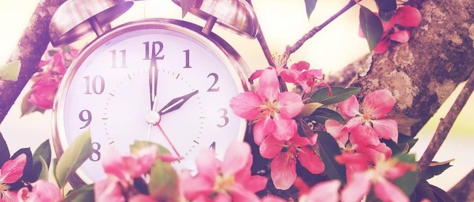 Vrijeme cvijeće sat proljeće ljeto shutterstock 246500044