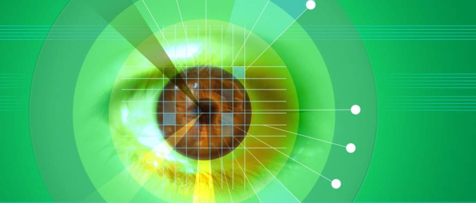 oko, sken oka, mreznica