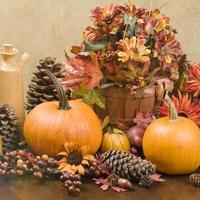 bundeve jesen