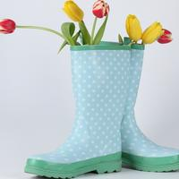 gumene cizme, kisa, jesen, tulipani, cvijece