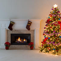 Drvo, Shutterstock 347560154