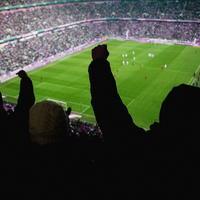Nogomet navijaci stadion shutterstock 188912990