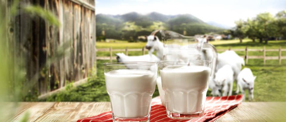 mlijeko, Shutterstock 601267100 (1)