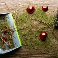 bozicno drvce Shutterstock 557445208