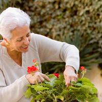 starija zena, vrt, vrtlarenje, cvijece