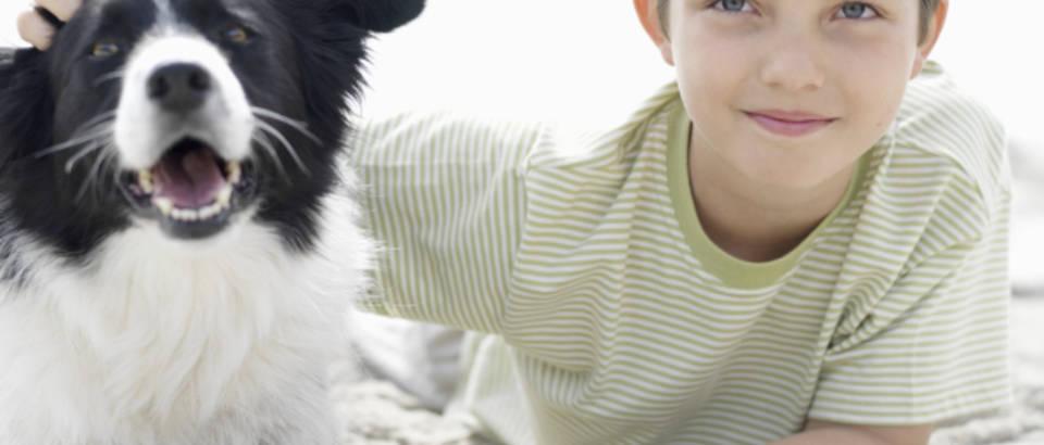djecak, pas, prijateljstvo, kucni ljubimac