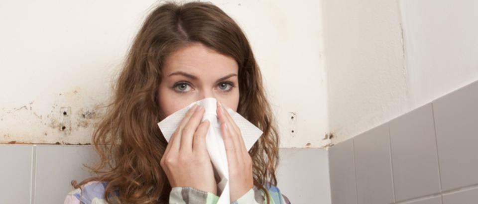 Astma, plijesan