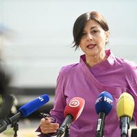 Sanja Musić Milanović, HZJZ