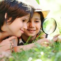 ucenje, Shutterstock 135191687