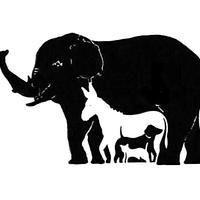 mozgalica, slon