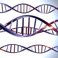 geni dna1