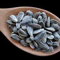sjemenke suncokreta