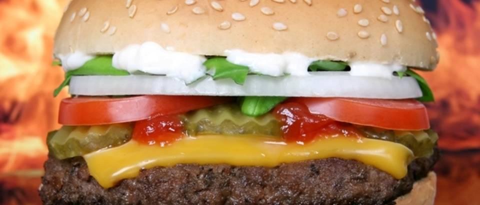 hamburger, masna hrana, fast food, junk food