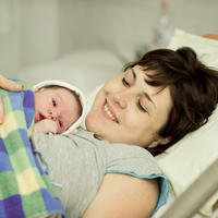 Shutterstock 230305036