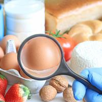 Hrana alergija alergija na hranu povećalo shutterstock 399991723