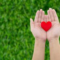 zdravo srce, Shutterstock 428821333