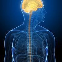 mozak-covjek-tumor-rak