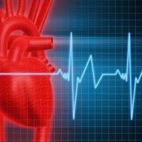 srce-puls1