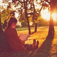 čitanje knjige uživanje zalazak sunca odmor shutterstock 296194835