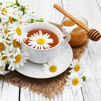 kamilica, Shutterstock 548393251