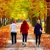 Shutterstock 88021633