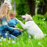 mama curica i pas