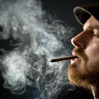 marihuana, trava, kanabis