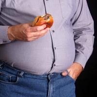 debljina, pretilost, fast food, junk food