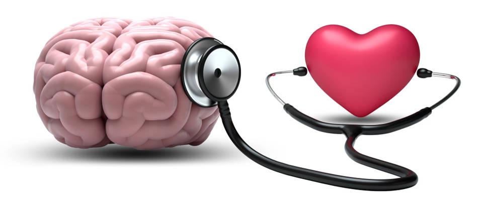 mozak, srce, mozdani udar