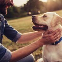 Shutterstock 708732331