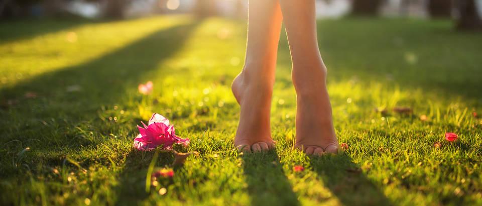 bose noge, Shutterstock 552329416